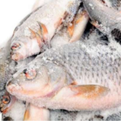 Agency Reacts To Plastic Fish Circulation In Nigeria