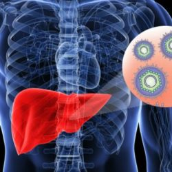 4 Important Things To Note About Hepatitis B Virus