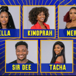 #BBNaija: Statistics Of How Audience Voted For Their Favourite Housemates